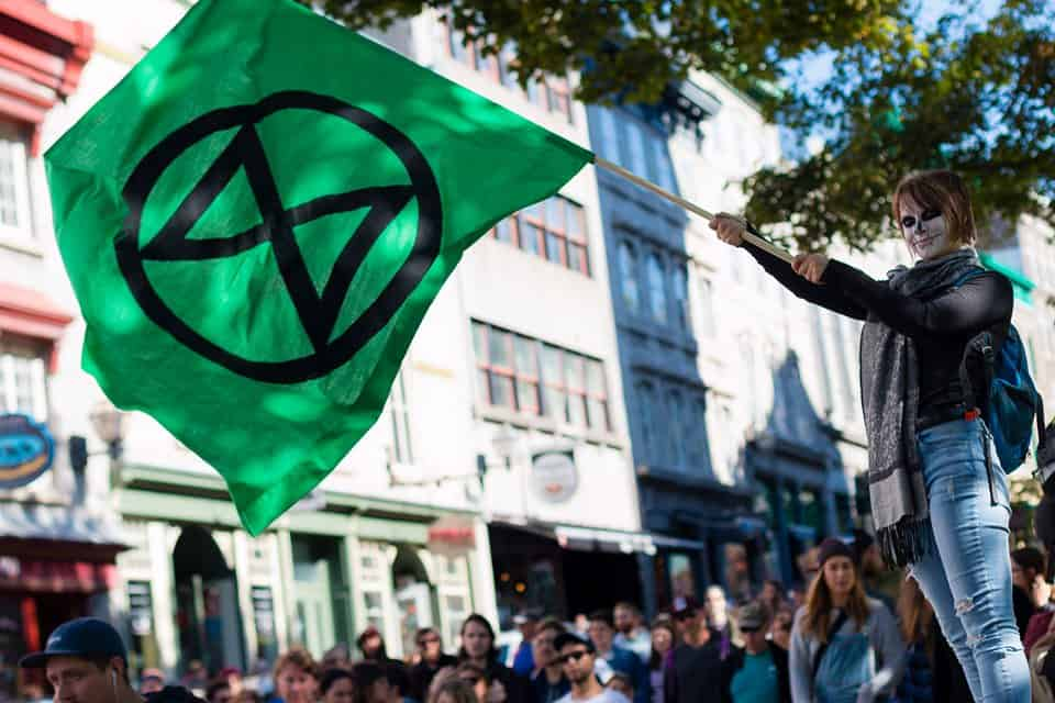 web-extinction-rebellion-drapeau