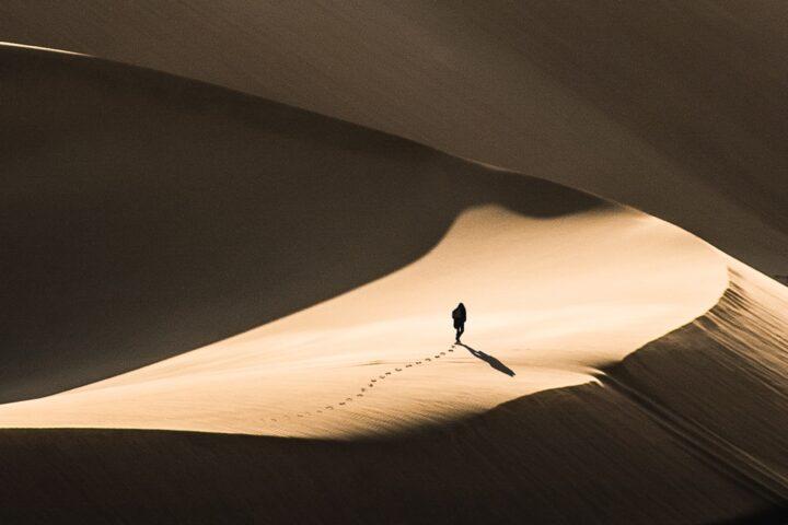 jacques dufresne désert