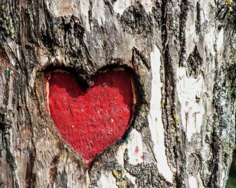 L'amour n'est pas Dieu